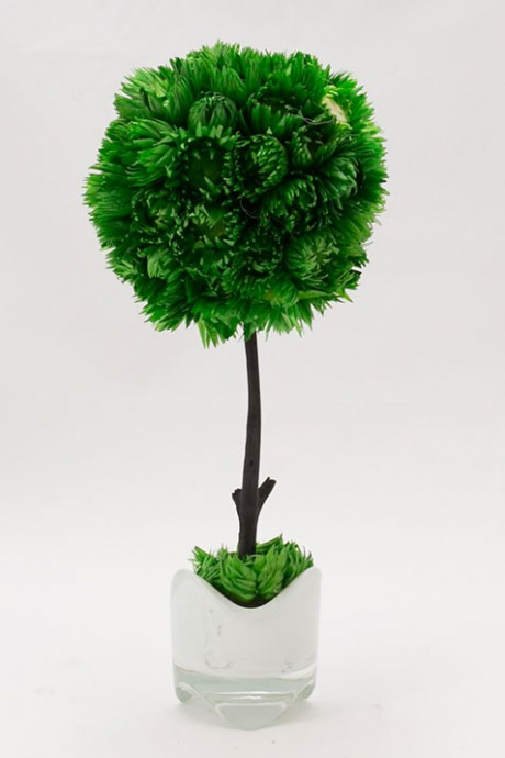 עץ-כדור-ירוק