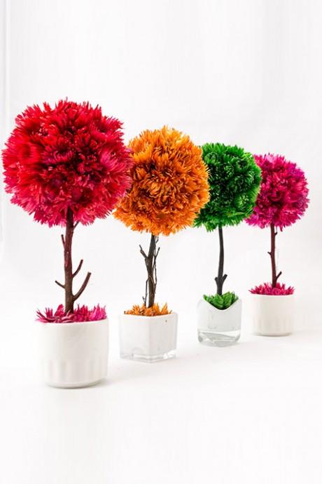 עצי-כדור-במגוון-צבעים