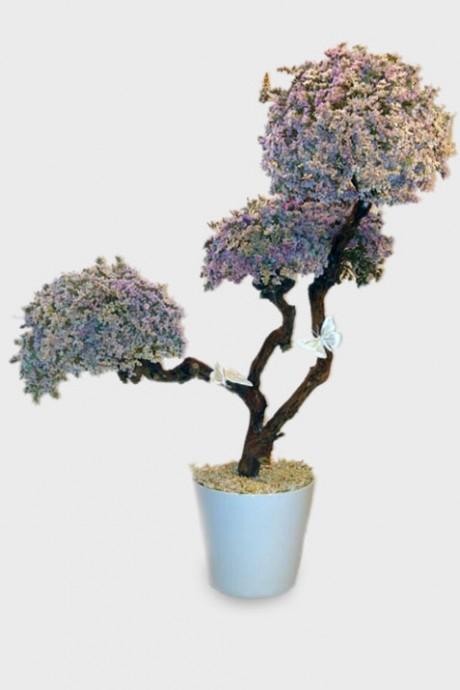 עץ-לימוניום-גדול
