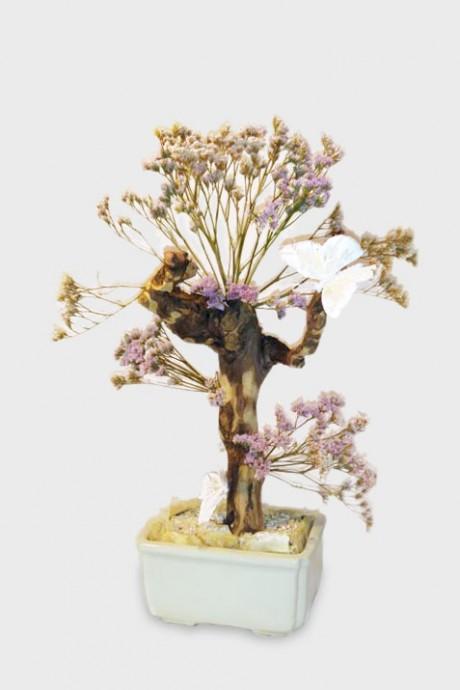 עץ-לימוניום-קטן